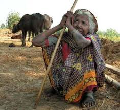 Dalits live in grinding poverty
