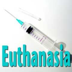 euthanasia(7)