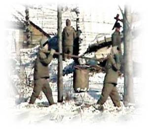 North Korea's Gulags