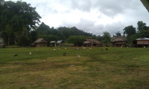 The Karen village at Pk' Law Gaw