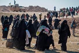 genocide of yazidis