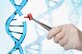 gene editing 2