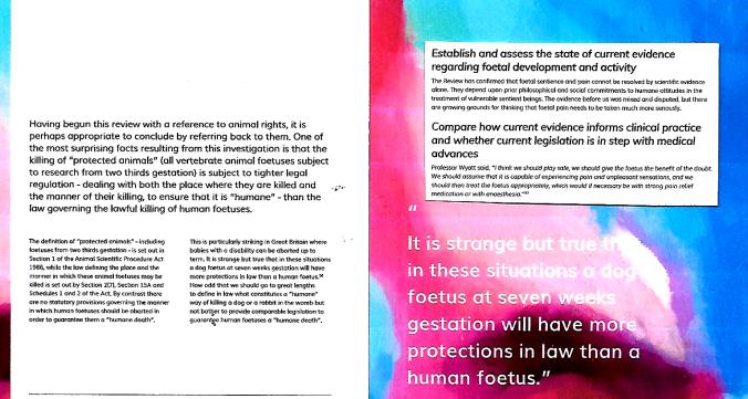 Foetal Pain Report 4