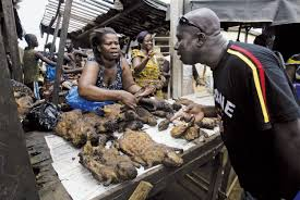 nigerian bushmeat market