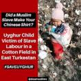 Uighur slave labour 7