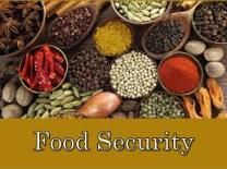 food security 1