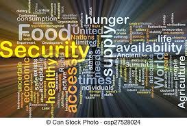 food security 3