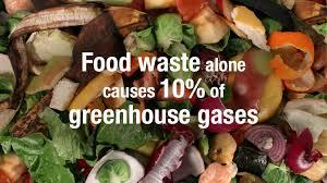 food waste 2
