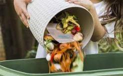 food waste3